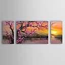 Oil Painting Floral Plum Flowers Set of 3 with Stretched Frame 1307-FL0156 Hand-Painted Canvas