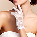 Wrist Length Fingertips Glove - Lace Bridal Gloves
