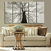 キャンバス·アート植物古い木は5本セット