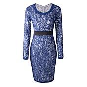 女性のラウンド襟のレースの長袖のドレス