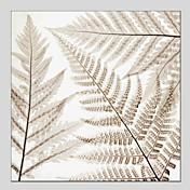 Pintada a mano Floral/Botánico Cuadrado,Modern Clásico Un Panel Lienzos Pintura al óleo pintada a colgar For Decoración hogareña