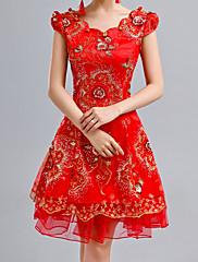 Lady Antebellum v čínském stylu Večerní Cheongsam