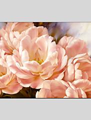 手描きの 花柄/植物のModern クラシック トラディショナル 欧風 1枚 キャンバス ハング塗装油絵 For ホームデコレーション