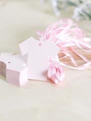 クラシックテーマ-ラベル / タグ(ピンク / ブルー,コートボール紙