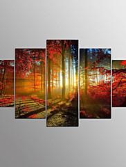 Estampados de Lonas Esticada Abstracto,5 Painéis Tela Horizontal Estampado Decoração de Parede For Decoração para casa