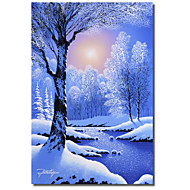 Printed Canvas Art December Dawn by Jon Rattenbury with Strethed Frame