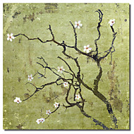 Printed Canvas Art Floral Cherry Tree I by Karen Williams with Stretched Frame