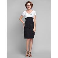 Lanting Sheath/Column Plus Sizes / Petite Mother of the Bride Dress - Multi-color Knee-length Short Sleeve Lace