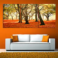 Stretched Canvas Art Botanical Red Leaves Set of 3