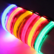 Cat / Dog Collar LED Lights / Adjustable/Retractable Solid Red / Black / White / Green / Blue / Pink / Yellow / Orange Nylon