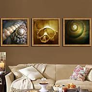 Still Life Framed Canvas / Framed Set Wall Art,PVC Golden No Mat With Frame Wall Art