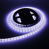 Impermeabile 5M 60W 60x5050SMD 3000-3600LM 6000-7000K luce bianca fredda luce di striscia LED (DC12V)