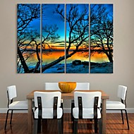 Stretched Canvas Art  Trees By The Lake Landscape Painting  Set of 4