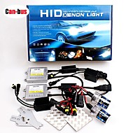 12V 55W H1 6000K Premium Ac Error-Free Canbus Compatible Ballasts Hid Xenon Kit For Headlights