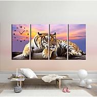 Tiger Clock in Canvas 4pcs