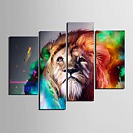 Leinwandkopie Kunst Tiere Lion 4er Set