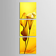 Em Canvas Art lírios amarelos Floral conjunto de 3