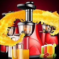 Fruit and Vegetable Low-speed Muted Raw Juice Extractor