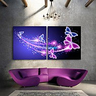 E-HOME® Stretched LED Canvas Print Art Butterfly Flash effect LED Set of 2