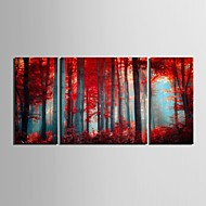 e-Home® allungata tela arte legno rosso pittura decorativa set di 3