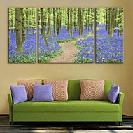 E-HOME® Stretched Canvas Art Lavender Forest Decorative Painting Set of 3