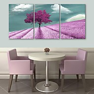 E-HOME® Stretched Canvas Art Purple Flowers And Trees Decoration Painting Set of 3
