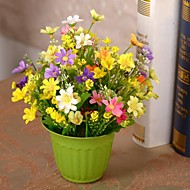 "7.9""L 11.4""H Vitality Multicolor Daisies in Resin Pot"