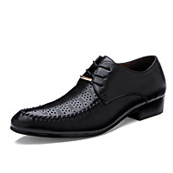 Men's Spring / Summer / Fall Comfort / Pointed Toe Leather Office & Career / Casual Flat Heel Lace-up Black / Brown / Ivory