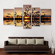 E-HOME® Stretched Canvas Art The Reflection of The Water Decorative Painting  Set of 5