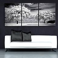 e-Home® venytetty kankaalle art puut sisustusmaalaus sarja 3
