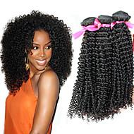 """12 """"-24"""" obearbetat brasilianskt jungfruligt hår naturligt svart färg kinky lockigt människohår väva heta försäljning."""