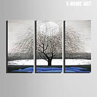 e-Home® Canvastaulu art koristelu maalaus sarja 3