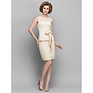 Sheath / Column Mother of the Bride Dress Short / Mini Sleeveless Lace with Lace