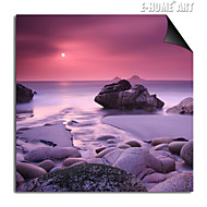 E-HOME® Magnetic Print Replaceable Art Coastal Scenery Decorative Painting Multi Style Optional