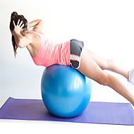 Fitnessball PVC Rosa / Blau / Purpur 30X20X20 Unisex No
