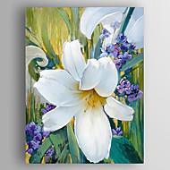 Ručně malované Květinový/Botanický motivModerní Jeden panel Plátno Hang-malované olejomalba For Home dekorace