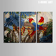 E-HOME® Stretched Canvas Art Color Parrot on Fruit Tree Decoration Painting  Set of 3