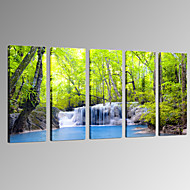 VISUAL STAR®Green Forest Canvas Prinitng Art Restaurant and Office Decor Canvas Artwork Ready to Hang