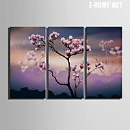 Kasvitiede Canvas Tulosta 3 paneeli Valmis Hang , Pysty