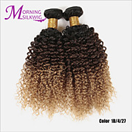 2PCS/LOT Ombre Peruvian Hair Kinky Curly Unprocessed 100% Human Hair Weave Bundles Peruvian Ombre Extensions Hair