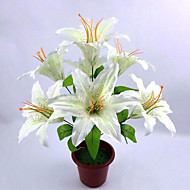 7 Heads Stem Starfighter Stargazer Lily Bunch