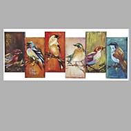 6 Pcs One Set Birds Handmade Oil Painting Stretched