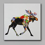 Ζωγραφισμένα στο χέρι Ζώο Τετράγωνο,Μοντέρνα Μονόπτυχα Καραβόπανο Hang-ζωγραφισμένα ελαιογραφία For Αρχική Διακόσμηση