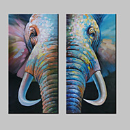 Hand-Painted Abstract Lovely Animal Elephant Modern Sheep Oil Painting , Canvas One Panel Ready to Hang 60x120cm X2pcs