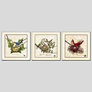 Pintados à mão Animal / Floral/BotânicoModerno / Clássico / Tradicional / Estilo Europeu 3 Painéis Tela Pintura a Óleo For Decoração para