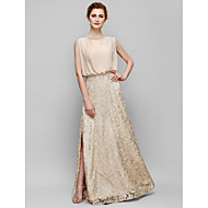 Sheath/Column Mother of the Bride Dress - Champagne Floor-length Sleeveless Chiffon / Lace