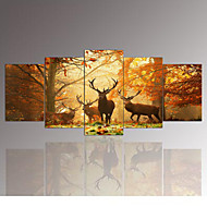 5 Panel Wall Art,The deer,Painting Pictures Print On Canvas,The Picture For Home Modern Decoration piece