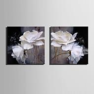 Mini-Größe E-home Ölgemälde modernen weißen Blumen reine Hand rahmenlos dekorative Malerei zeichnen