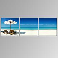 מפורסם / נוף / פטריוטי / מודרני / רומנטי הדפסת בד שלושה פנלים מוכן לתלייה,אופקי