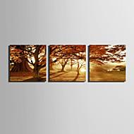 plátno Set Krajina evropský styl,Tři panely Plátno Čtvercový Tisk Art Wall Decor For Home dekorace
